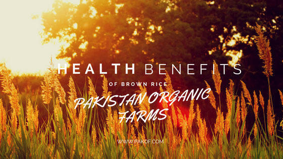 Health Benefits of Organic Brown Rice- USDA and EU Certified