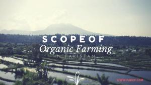 Scope of Organic Farming in Pakistan
