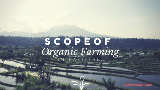 Scope of Organic Farming in Pakistan - Pakistan Organic Farms