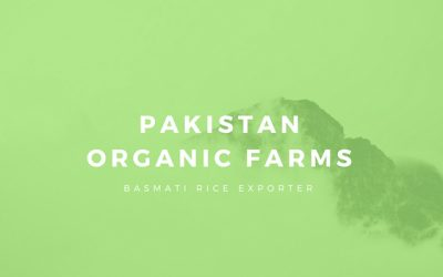 Organic Basmati Rice Exporters and Farmers Practices in Pakistan